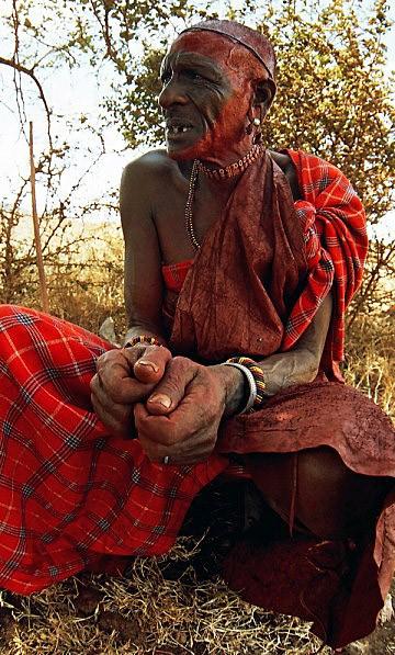 Africké veľký péro pics