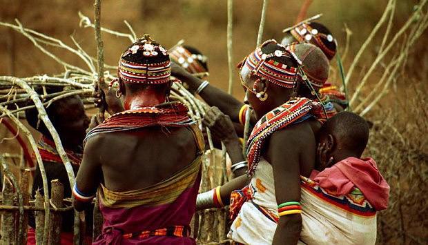Veľký péro africký kmeň