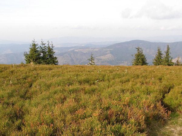 Herfst in Kysucké Beskydy