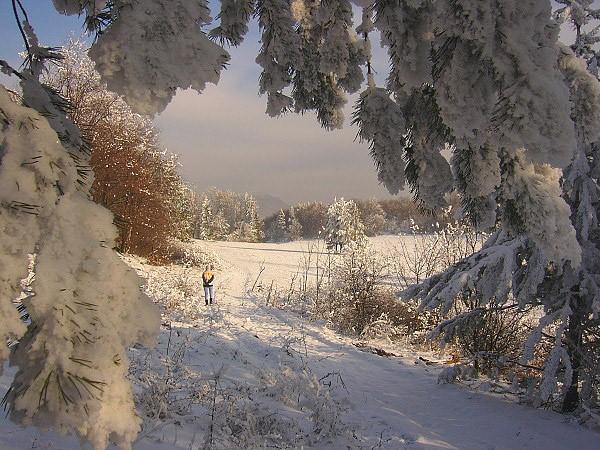 Bôčky v zime