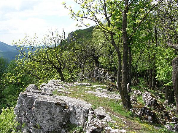 Vpenn (752 m) - sacicrm.info