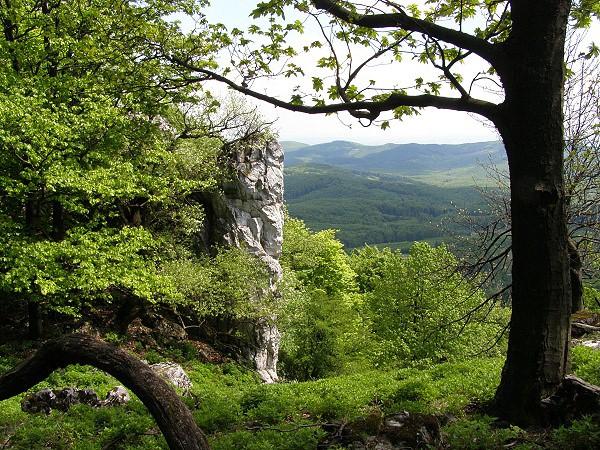 Latzelova stezka krasem Rychlebskch hor | Turistika
